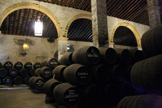 tour of Bodegas Gutierrez Colosia