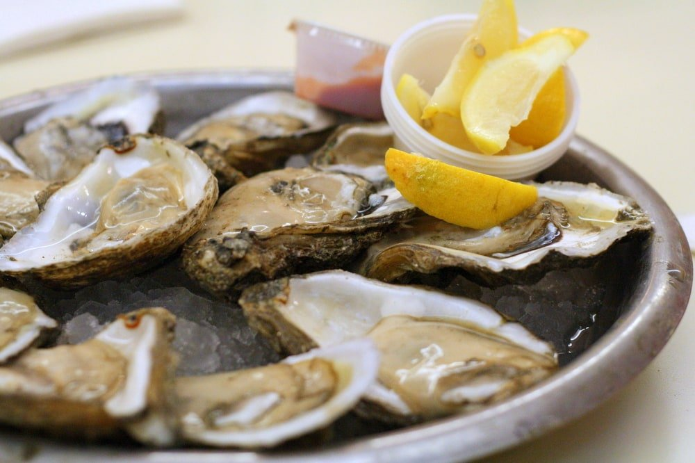 best oysters in New Orleans
