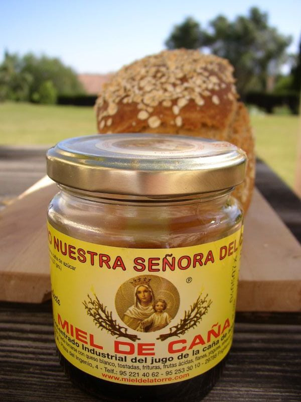 This is miel de caña, just one of the many foods from malaga that will surprise you!