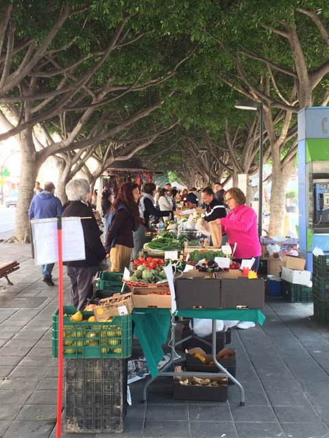One of the best markets in Malaga is this one, te Guadalhorce Ecological Market, a farmers market that happens once per month