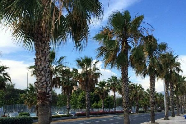5 Ways to Stay Cool in Malaga When the Summer Temperature Rises