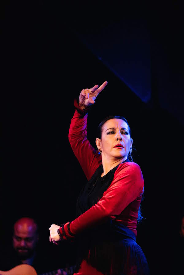 Visiting Malaga in July? You can't miss the Terral Flamenco Festival!