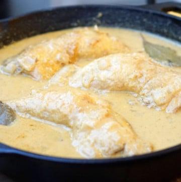 Spanish chicken in almond sauce; Spanish pollo pepitoria