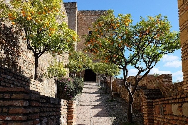 The Malaga attraction that we always love showing off is the Alcazaba. With these gorgeous orange trees it makes the list of 100 things to do in Malaga