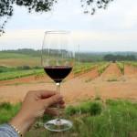 Hidden gems await in Spain's lesser known wine regions.