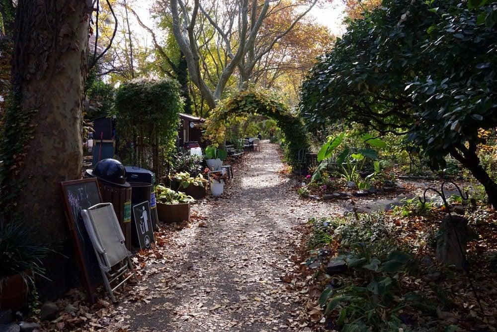 An urban garden in NYC