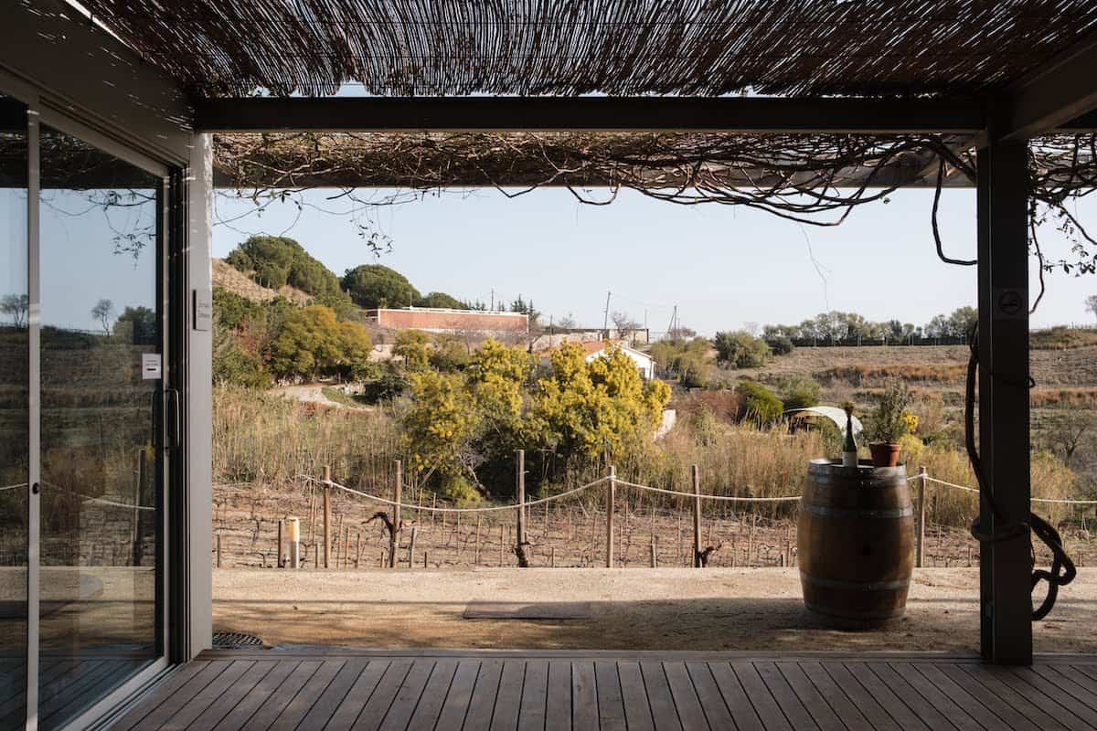 View of a vineyard taken from inside a semi-exterior structure with a roof overhead