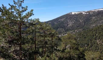 Hiking in Cercedilla