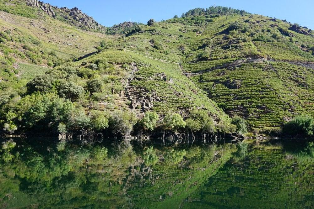Boat trip Rio Sil Galicia
