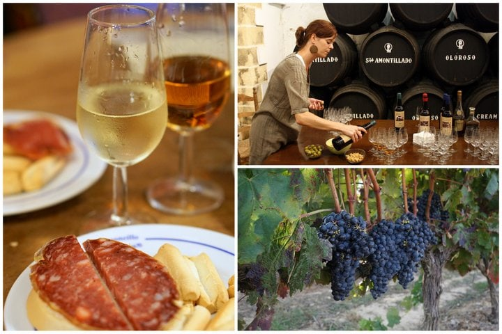 Sherry wine tour 2017 Spain