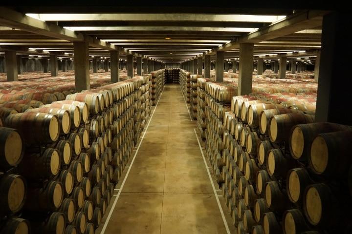 Best bodegas in La Rioja; Campo Viejo tour La Rioja; wine tours in La Rioja; barrel room