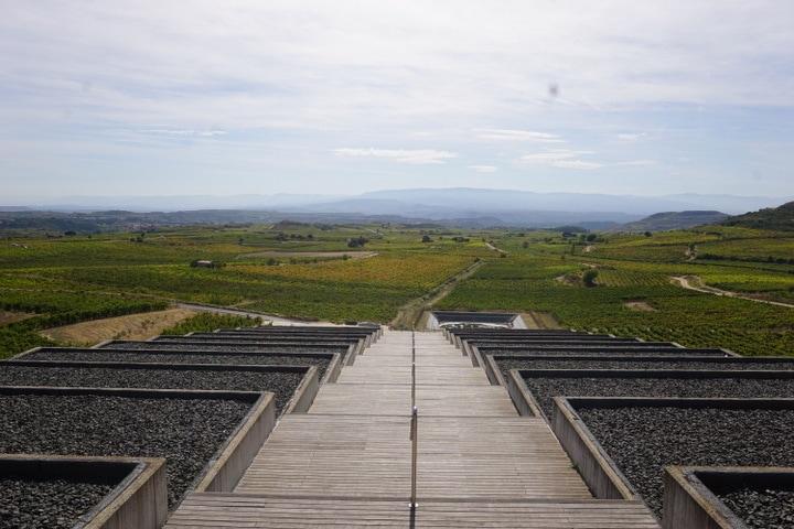 The gorgeous view from Baigorri in La Rioja! La Rioja wine tours