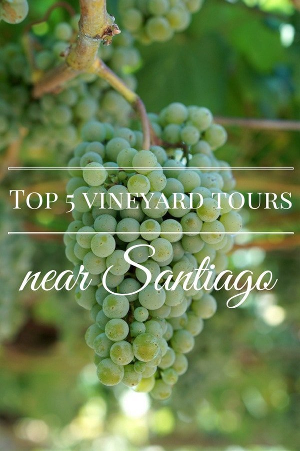 Santiago is a fun place to explore, but sometimes you need to get out of the city! Take a vineyard tour near Santiago de Compostela for a breath of fresh Galician air!