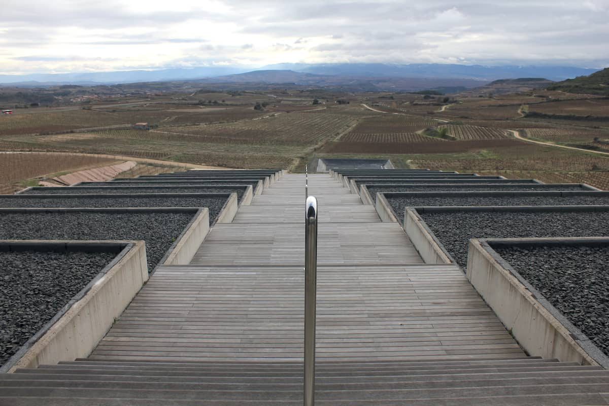 View over wine vineyards from a large wooden outdoor staircase