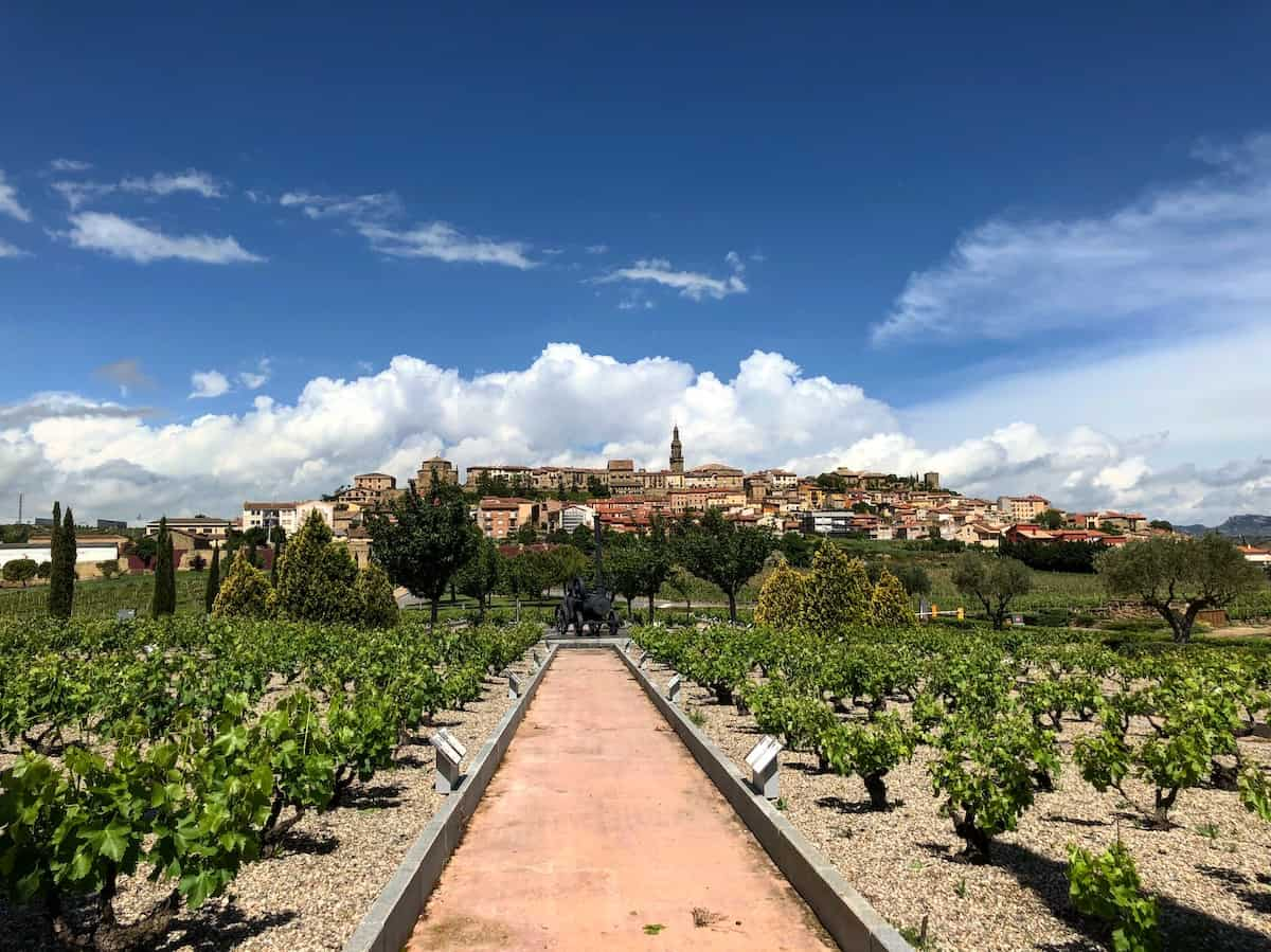 View of the town of Briones, Spain from a vineyard