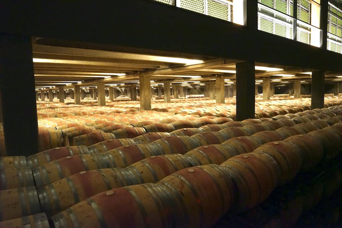 Large room full of wooden wine barrels