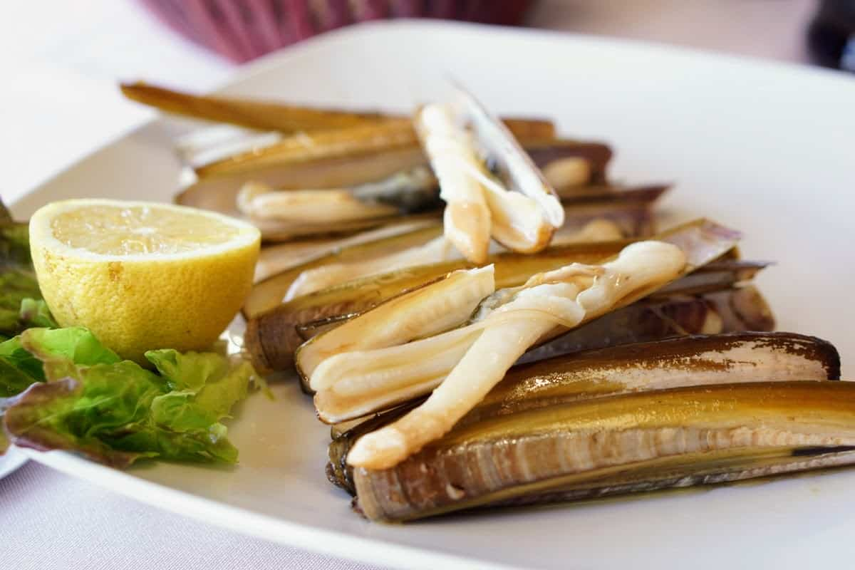 Razor clams on a white plate with a slice of lemon