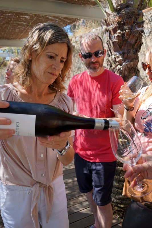 Winery tour Wine and Cava Day Trip from Barcelona