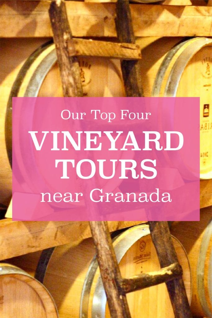 Want to get up close and personal with some seriously great wine? These fabulous vineyard tours near Granada are calling your name.