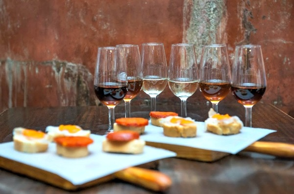 Enjoy a unique tapas and wine experience at Aranleón for one of the most delicious vineyard tours near Valencia!