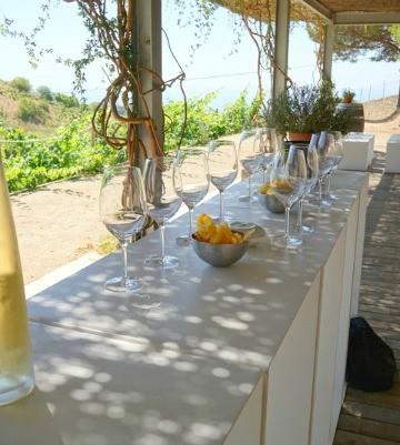 Vera de Estema is one of our favorite winery tours near Valencia!