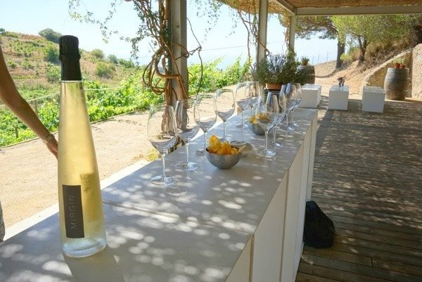 Vera de Estema is one of our favorite winery tours near Valencia!