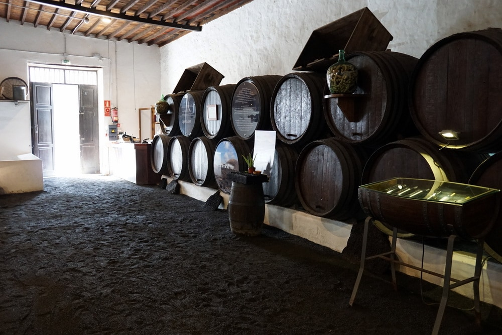 wineries tour in Lanzarote Bodega la Geria