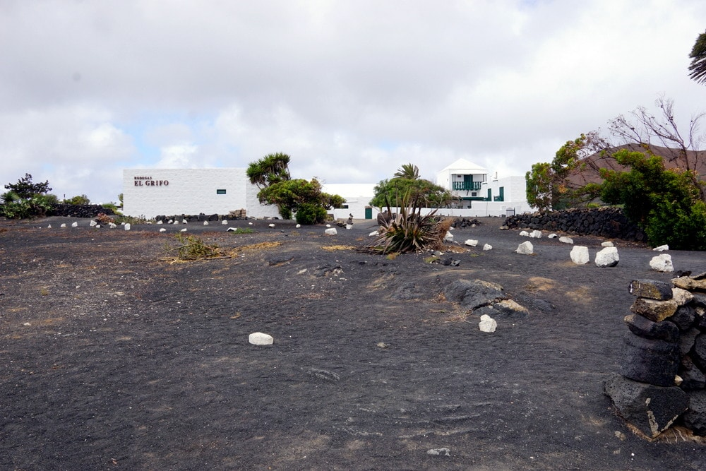 Visiting Bodegas El Grifo in Lanzarote with Eco Insider Bodega Hopping Tour.