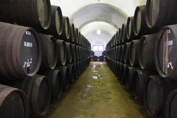 Barrels upon barrels of wine await you at Bodegas Espadafor, one of the best wine shops in Granada!