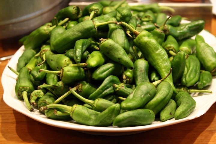 Padron Peppers San Sebastian gastro guide