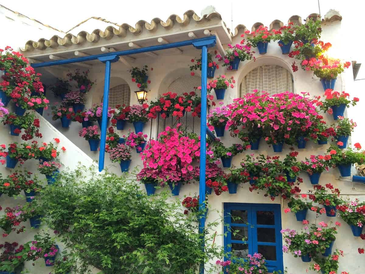 Interior courtyard decorated with pink flowers