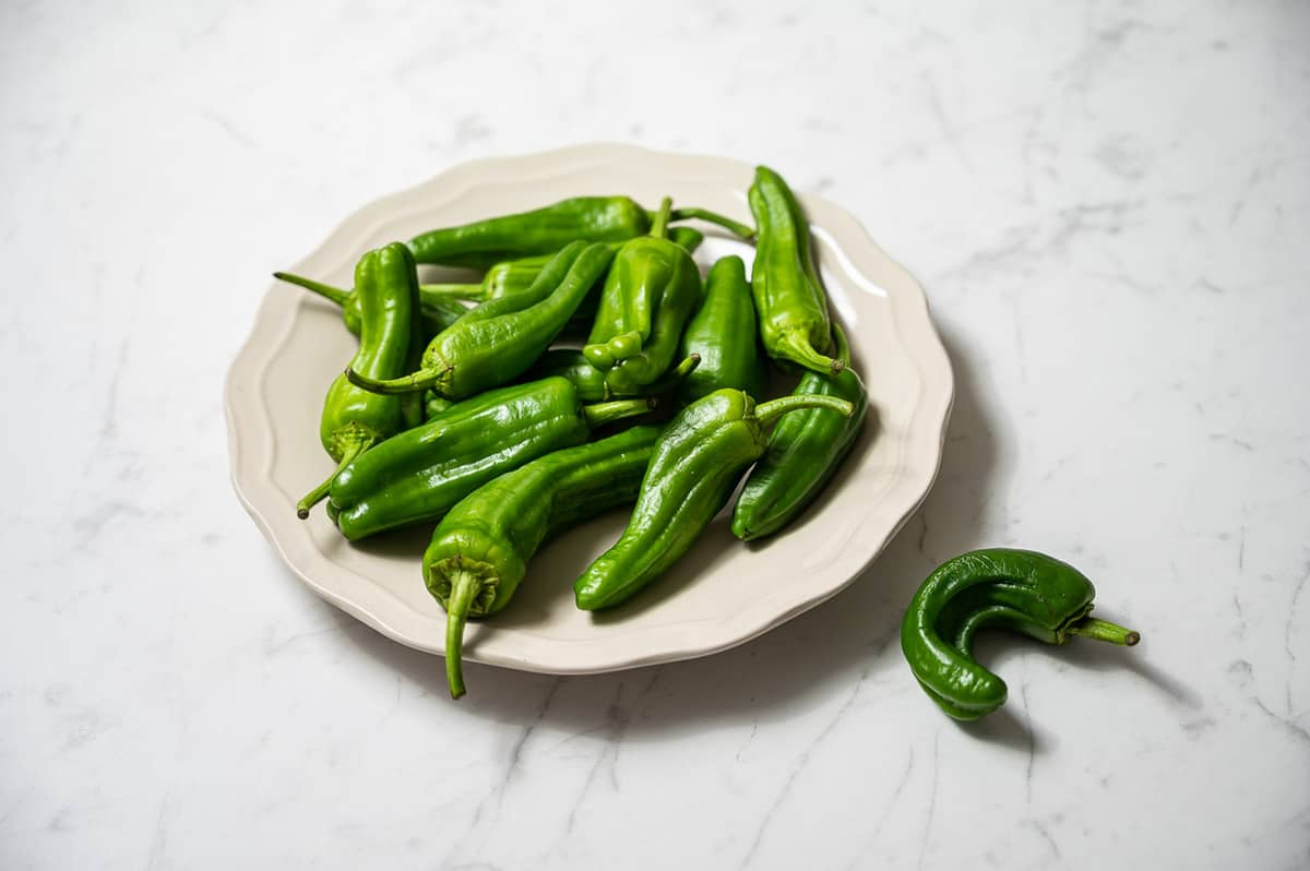 Raw padron peppers on a white plate