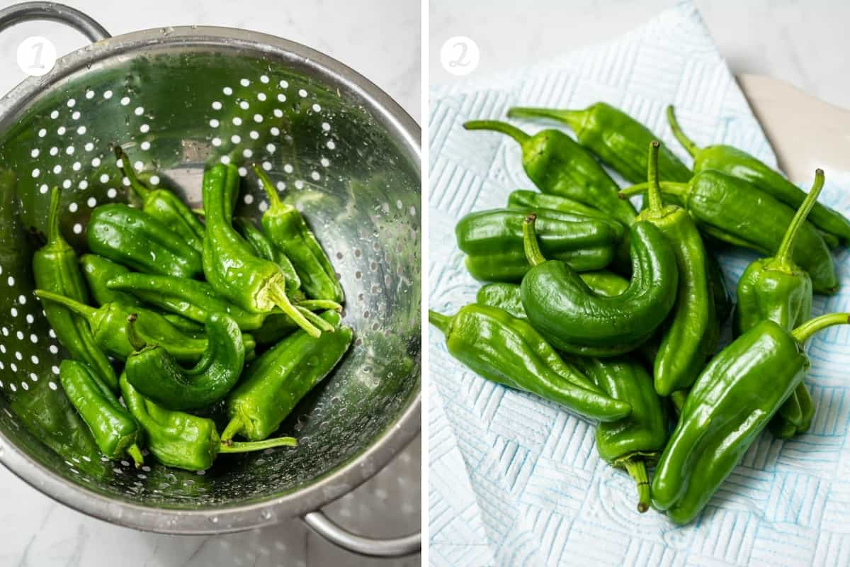 Step by step photos for making padron peppers. Step 1 wash the peppers in a colander. Step 2 dry on paper towels.