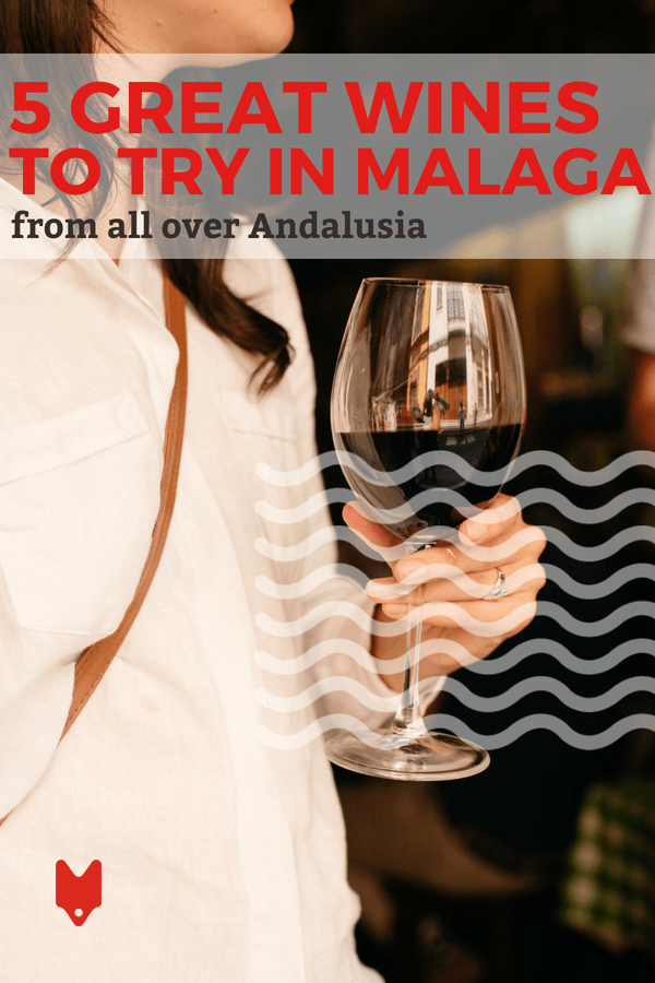 If you need us, we'll be at the bar trying these 5 wines to order in Malaga. Who's joining us?