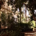 One of our favorite parks in Granada is the small botanical garden that belongs to the university.