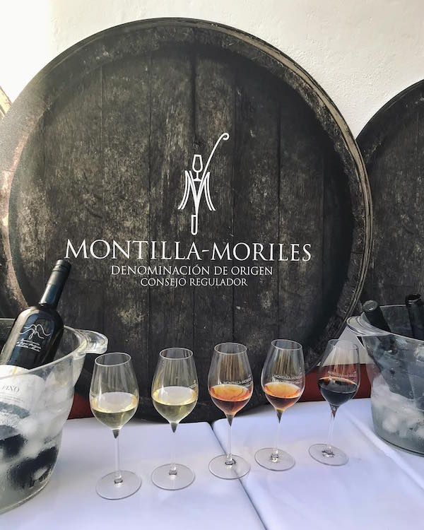 must try foods in Cordoba: montilla-moriles wine