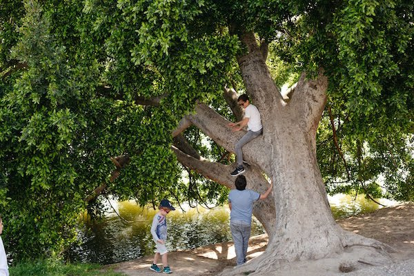 Seville with kids - playing in the park