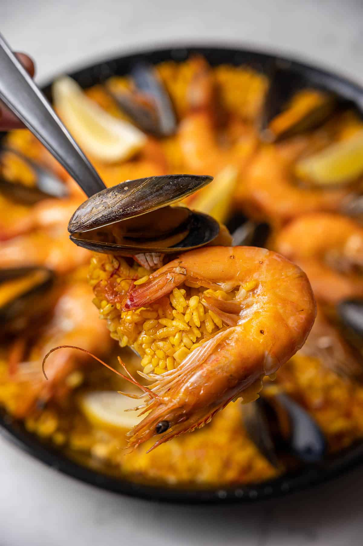 Close up of a spoonful of seafood paella with shrimp and mussels with the rest of the paella in the background.