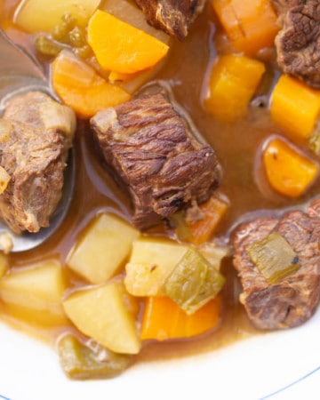 Close up of a bowl of Spanish beef stew