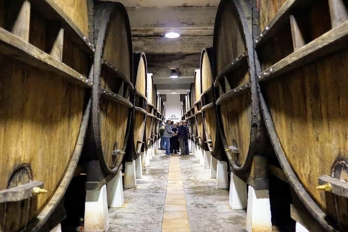 Rows of large cider barrels at a cider house.