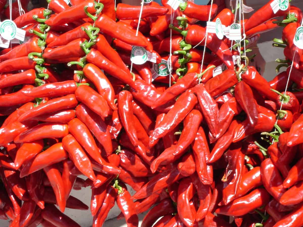Close up of red peppers displayed for sale at a market.