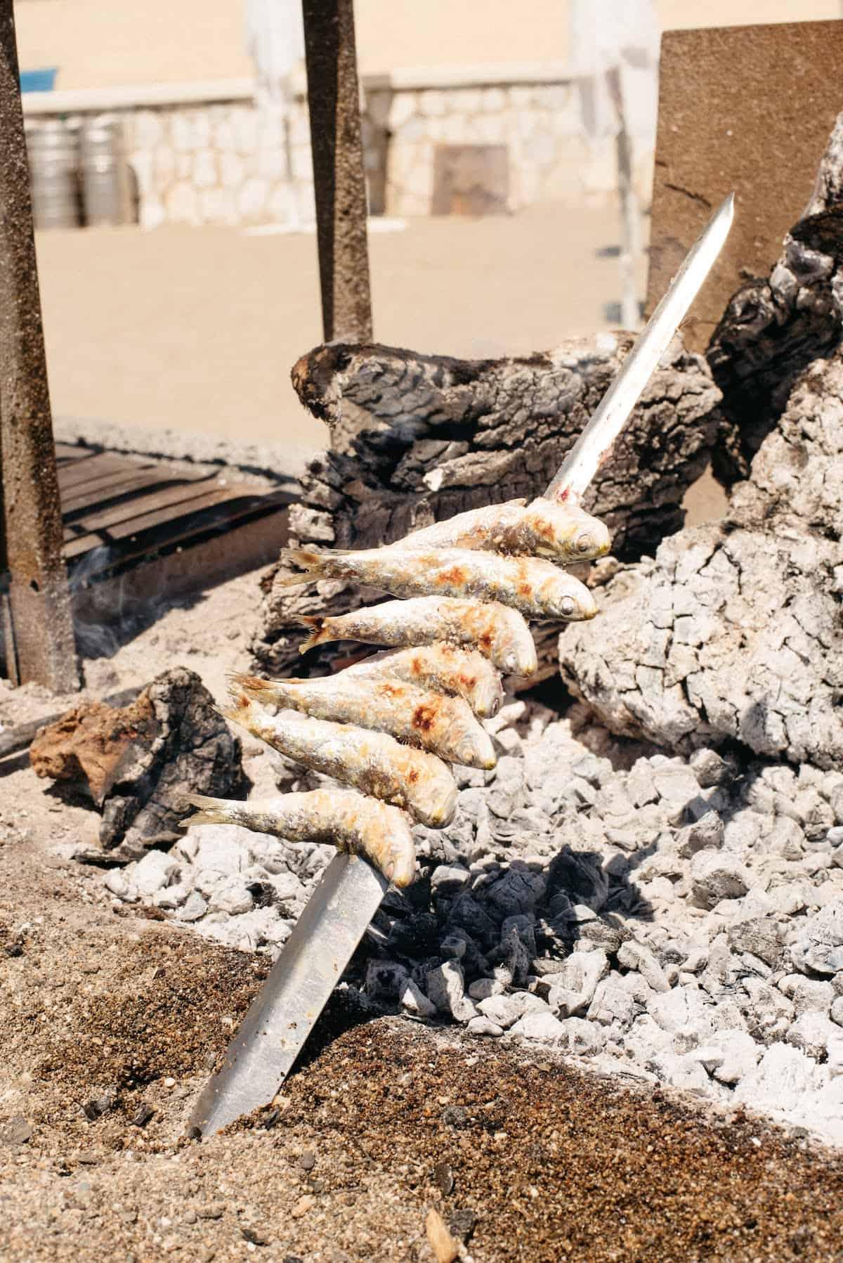 Skewer of sardines grilling over coals.