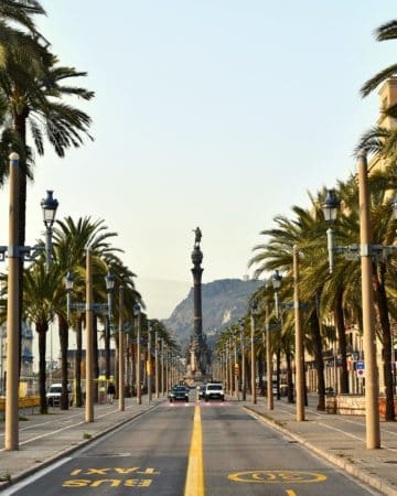 View down a two-lane street lined by palm trees to a decorative column